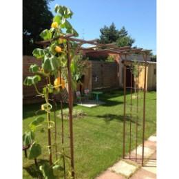 Pergola de jardin double droite en acier fer vieilli