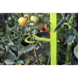 Attache pour éco tuteur à tomate en plastique vert anis (les 6)