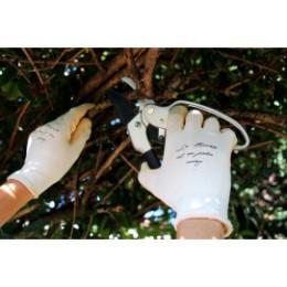Gants de jardinage femme confort à l'eucalyptus