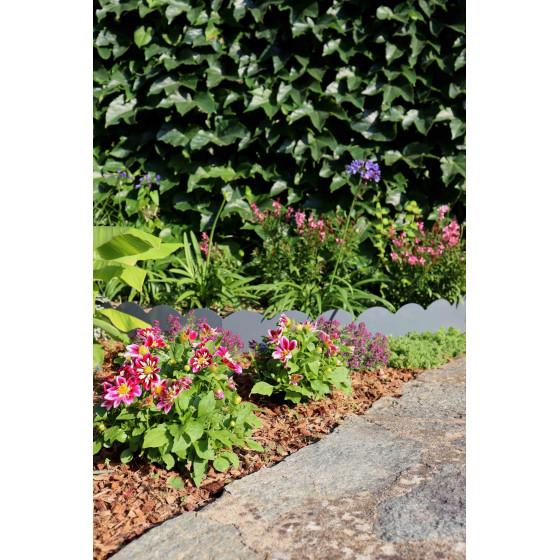 Paillage biodégradable sur un parterre de fleurs