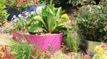 Aménagez un talus en pente avec des bordures de jardin demi lune en acier, signées Jardin et Saisons